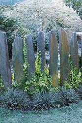 Hoar frost on Indian slate pillars used as low fence. Design: John Massey, Ashwood Nurseries