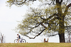 © Licensed to London News Pictures. 16/04/2015<br /> A bright but cloudy day at Knole Park,Sevenoaks,Kent,<br /> (Byline:Grant Falvey/LNP)