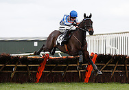 Tom Cannon riding Theo's Charm clears the last to win the J H Builders Novices´ Hurdle at Plumpton Racecourse - 13 Dec 2015
