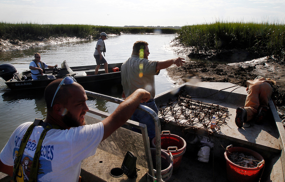 Lee Taylor, and Peter Bierce, Commercial Shellfish management with the South Carolina Department of Natural Resources, top left, approach a oyster culture grounds maintained by Craig Reaves, owner of Sea Eagle Seafood Market in Beaufort, center, while harvesting this years first ten bushes of oysters with local commercial fisherman Lamar Jensen, left, and David Wayland, right, in Battery Creek on September 2, 2014. Oyster culture grounds opened on Setember 1, and state waters opens on Oct. 1, 2014.