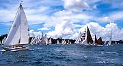 yachts in Tall Ships Regatta near Russell, Bay of Islands