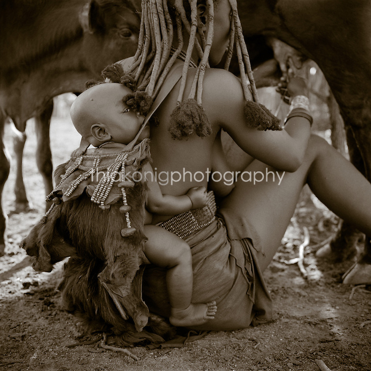 Akha woman milks a cow with a baby on her back, Northern Namibia, Africa