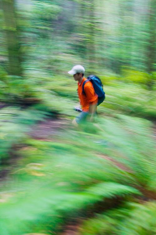 Panning shot of a man hiking through a forest.