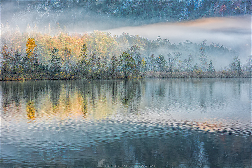 A misty morning at the Almsee in Upper Austria - I was really happy to be at the right spot at this time.