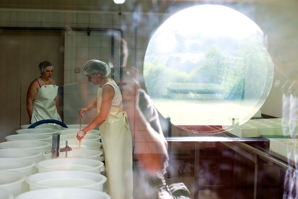 La production des fromages Livarot, Pont l'&Eacute;v&ecirc;que et Pave d'Auge AOP au Domaine Saint Hippolyte, une ferme augeronne avec un beau Manoir &ndash; ISMH - fin du XV&egrave;me si&egrave;cle d&eacute;but du XVI&egrave;me si&egrave;cle et ses d&eacute;pendances.<br /> Saint Martin de la Lieue, France. 17/07/2013.