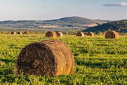 Hay bales in a field next to the Roach Farm Campsite on the International Appalachian Trail. Merrill, Maine - near Smyrna Mills.