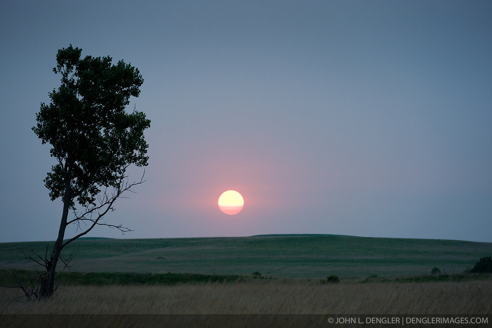 A lone cottonwood tree stands witness to the setting sun on the rolling hills of the Tallgrass Prairie National Preserve. The 10,894-acre Tallgrass Prairie National Preserve is located in Chase County near the towns of Strong City and Cottonwood Falls. Less than four percent of the original 140 million acres of tallgrass prairie remains in North America. Most of the remaining tallgrass prairie is in the Flint Hills in Kansas. Tallgrass Prairie National Preserve is the only unit of the National Park Service dedicated to the preservation of the tallgrass prairie ecosystem. The Tallgrass Prairie National Preserve is co-managed with The Nature Conservancy.