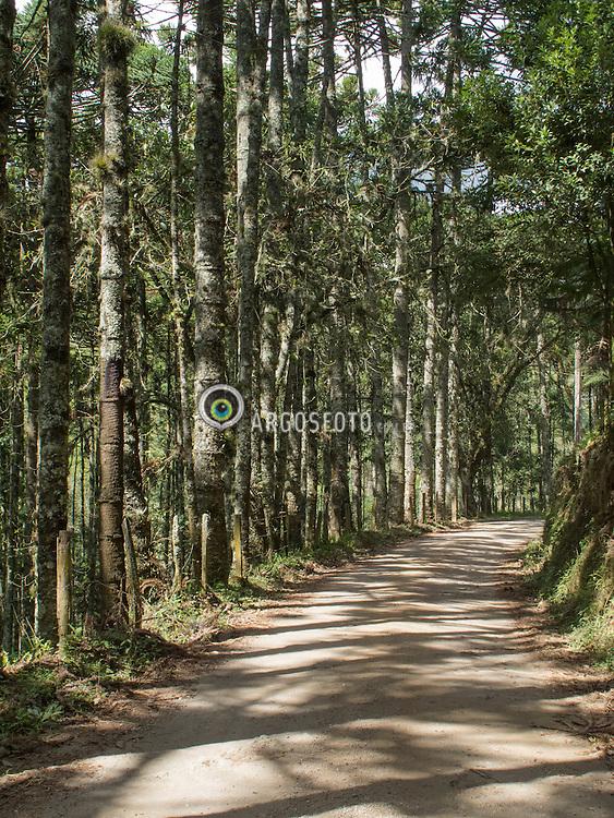 Estrada vazia, Goncalves, Minas Gerais. // Empty road, Goncalves, Minas Gerais. Marcos Issa - MG - 2011