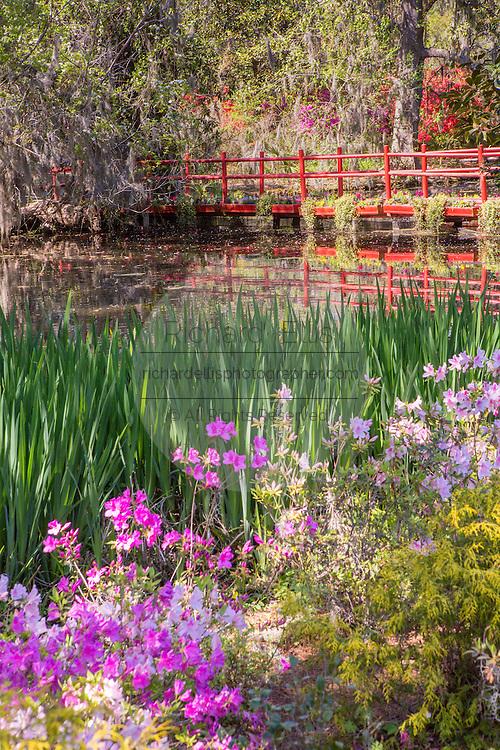 Red bridge over Schoolhouse Pond at Magnolia Plantation April 10, 2014 in Charleston, SC.