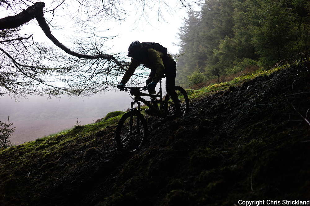 Glentress, Peebles, Scotland, UK. 31st May 2015. David Ogden in action during day two of The Enduro World Series Round 3 taking place on the iconic 7Stanes trails during Tweedlove Festival.