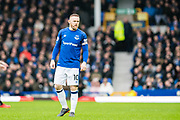 Everton (10) Wayne Rooney during the Premier League match between Everton and Crystal Palace at Goodison Park, Liverpool, England on 10 February 2018. Picture by Sebastian Frej.
