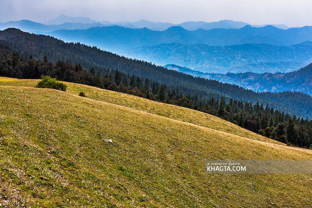 Landscape of the Meadows of Kuppar in Jubbal Tehsil of Shimla