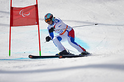 Solene Jambaque, Women's Giant Slalom at the 2014 Sochi Winter Paralympic Games, Russia