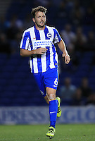 Brighton and Hove Albion's Dale Stephens