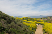People Hiking Las Ramblas Trails In San Juan Capistrano
