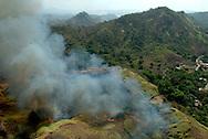Los incendios forestales, provocados o naturales, son contaminantes.Estos producen negativamente el incremento de las emisiones de di&oacute;xido de carbono, la disminuci&oacute;n de las emisiones de oxigeno y la p&eacute;rdida de los suelos. <br /> <br /> Un art&iacute;culo publicado por Vegetoman&iacute;a dice:<br /> es importante la labor delhombre sobre la naturaleza ya que es el &uacute;nico ser capaz de modificarla en su provecho, pero cuando esta acci&oacute;n se vuelve exagerada, movida por mezquinos intereses econ&oacute;micos, sin tener en cuenta quetodo lo que nos rodea est&aacute; en un perfecto equilibrio, &eacute;ste se rompe, poniendo en riesgo el presente, y sobre todo, el futuro del planeta.<br /> <br /> &copy;Alejandro Balaguer/Fundaci&oacute;n Albatros Media.