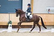Jennifer Sekreve - Gamante D<br /> KNHS Indoorkampioenschappen 2018<br /> © DigiShots
