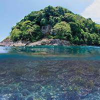 Split shot showing hard coral coverage, Tenggol Island, Tanjong Jara Resort, Terengganu, Malaysia.