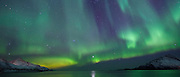 The Aurora Borealis, the spectacular Northern Lights turn the sky green and purple and Venus star above Kvaloya island at Tromso in the Arctic Circle in Northern Norway