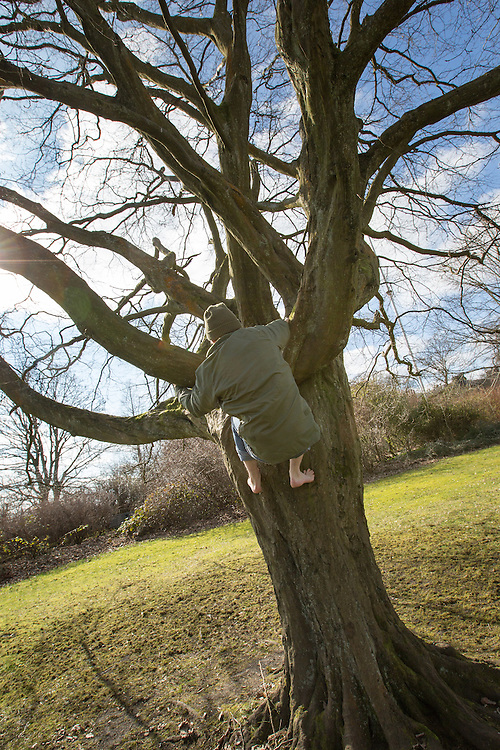 Author Jack Cooke has written a book about climbing trees. Picture Robert Perry for The Herald and  Evening Times 19th March 2016<br /> <br /> Must credit photo to Robert Perry<br /> <br /> FEE PAYABLE FOR REPRO USE<br /> FEE PAYABLE FOR ALL INTERNET USE<br /> www.robertperry.co.uk<br /> NB -This image is not to be distributed without the prior consent of the copyright holder.<br /> in using this image you agree to abide by terms and conditions as stated in this caption.<br /> All monies payable to Robert Perry<br /> <br /> (PLEASE DO NOT REMOVE THIS CAPTION)<br /> This image is intended for Editorial use (e.g. news). Any commercial or promotional use requires additional clearance. <br /> Copyright 2016 All rights protected.<br /> first use only<br /> contact details<br /> Robert Perry     <br /> 07702 631 477<br /> robertperryphotos@gmail.com<br />         <br /> Robert Perry reserves the right to pursue unauthorised use of this image . If you violate my intellectual property you may be liable for  damages, loss of income, and profits you derive from the use of this image.