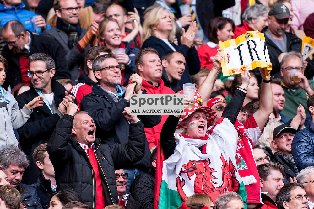 Wales fans celebrate a try. Action from the South Africa v Wales quarter final game at the 2015 Rugby World Cup at Twickenham in London, 17 October 2015. (c) Paul J Roberts / Sportpix.org.uk