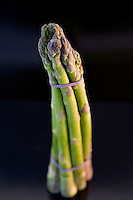 Nov 10, 2007 - Sydney, Australia - A bunch of Asparagus.<br />