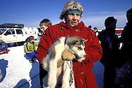 DEU, Germany,  dog sled race in Winterberg, Sauerland, woman with a young Siberian Husky.....DEU, Deutschland, Schlittenhunderennen in Winterberg, Sauerland, Frau mit einem jungen Sibirischen Husky.........