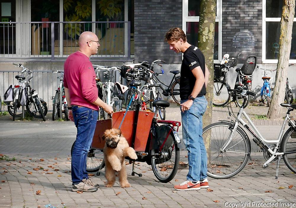 September 27, 2017 - 14:12<br /> The Netherlands, Amsterdam - Joris Ivensplein
