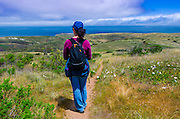 Hiker on the Scorpion Canyon Loop Trail, Santa Cruz Island, Channel Islands National Park, California USA