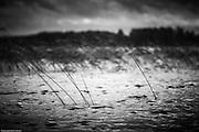 Personal fine art photography by Piotr Gesicki