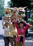 "Eve of Nyepi (Balinese New Year) Festival..Offerings to the gods...On Nyepi day, evil spirits descend to see wether the island is inhabited by humans. That's why nobody is allowed to leave the house on that day: when the demons don't find anyone, they leave the island alone for another year. Tourists are confined to their hotels, the use of cars is forbidden and, since 2000, even international air traffic is banned..On the eve of Nyepi however, a great ""Pratima"" (town meeting) is held on Denpasar's Puputan Square, complete with Hindu rituals and offerings to the gods. After sunset, huge cardboard monster puppets called ""Ogoh-Ogoh"" mounted on bamboo grids are carried in a loud and vivid parade around town by groups of young men, before they are burnt."