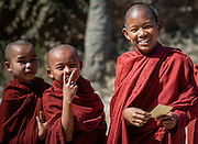 Young Buddhist monks smiling (Myanmar)