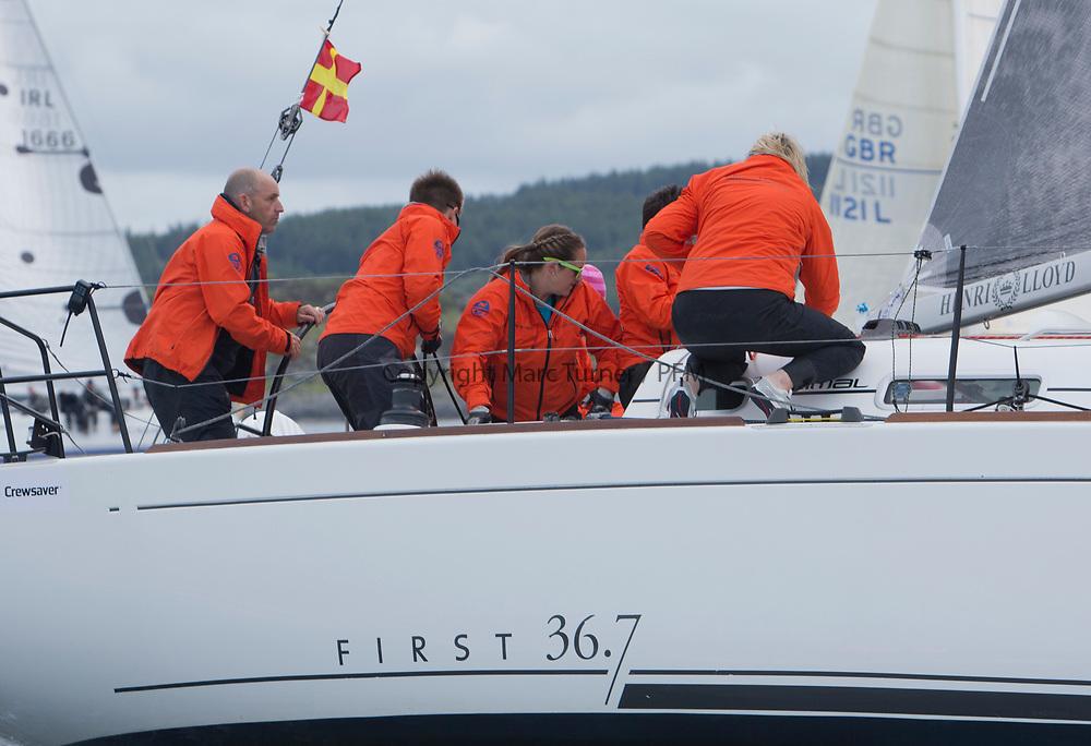 Silvers Marine Scottish Series 2017<br /> Tarbert Loch Fyne - Sailing Day 3<br /> <br /> GBR3627L, Animal, Kevin Aitken, CCC/RNCYC, First 36.7