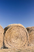Hay rolled in bales on a farm in Arkansas