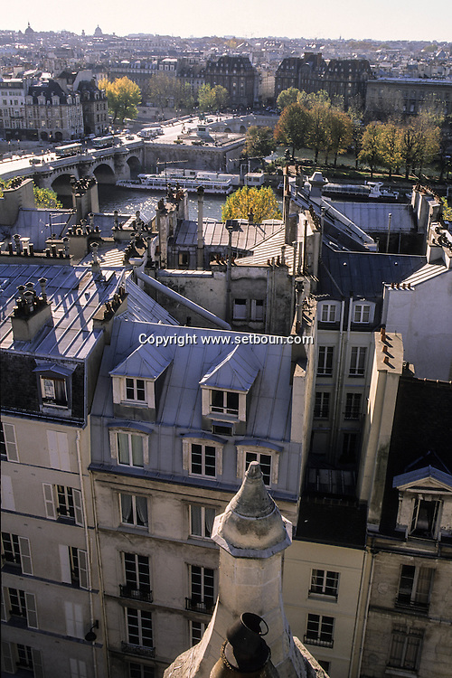 "France. Paris. Elevated view on the Seine river. The Seine river and the ""pont neuf"", view from St Germain L'auxerrois church (1st)  Paris  FranceParis"