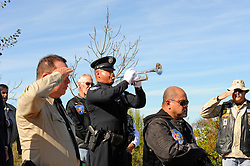 "Salinas police officer Walter Tinay plays ""Taps"" at Sunday's ceremony honoring fallen heroes at the Monterey County Vietnam Veterans Memorial."