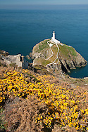 South Stack Lighthouse, Anglesey, Wales