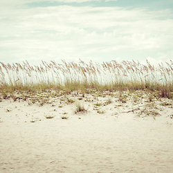 Pensacola Beach Florida beach grass beachscape retro photo. Pensacola Beach is a coastal city in the Emerald Coast area of the Southeastern United States. Photo is high resolution. Copyright ⓒ 2018 Paul Velgos with All Rights Reserved.
