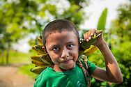Matagalpa, Nicaragua, May 2014. A boy with bananas. We overnight at a homestay in La Corona village. The people own, or work in, small familiy coffee plantations that sell their Arabica coffee via Sol Cafe, a Fair Trade cooperative. Matagalpa tours offers trips to coffee plantations and remote villages, rural community tourism, agro-tourism, hiking and biking. Central America's largest and least populated country consists of lakes; volcanoes and Spanish colonial cities. Photo by Frits Meyst / MeystPhoto.com