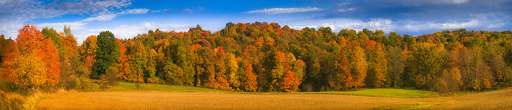 Panoramic rolling landscape of Midwestern farm after crop harvest, with autumn foliage framing field at sunset.