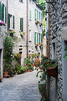 alley in Portico di Romagna, Italian medieval village on Tuscan-Romagna Appennins with the traditional houses made using stones.