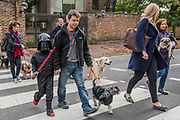 A charity Halloween Dog Walk and Fancy Dress Show organised by All Dogs Matter at the Spaniards Inn, Hampstead. London 29 Oct 2017.