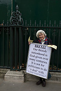 On the day that the UK Parliament once again votes on an amendment of Prime Minister Theresa May's Brexit deal that requires another negotiation with the EU in Brussels, pro-EU protesters gather outside the House of Commons, on 29th January 2019, in Westminster, London, England.