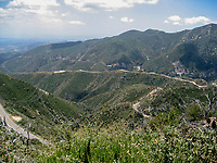 south slope from the telegraph road at Grizzly Flat, Angeles NF, Los Angeles Co, CA, USA, on 22-May-16