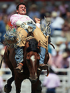 Bareback Rider ZAC COMPTON rides CLEAN WATER, 26 July 2007, Cheyenne Frontier Days
