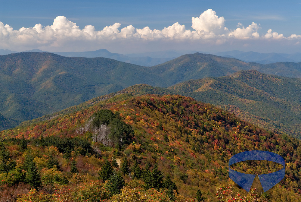 Fall color along the Art Loeb Trail overlooking Birdstand Mountain in the Shining Rock Wilderness Area contained within Pisgah National Forest in North Carolina (NC).