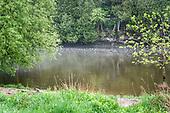 Elora Mill summer photos May 2020