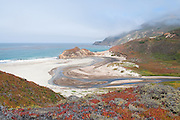 Little Sur River, Big Sur Beaches, Ice Plant, ocean mist, Los Padres National Forest, Carmel-by-the-Sea, Monterey County, California Coast, copyright 2009 by David Leland Hyde.
