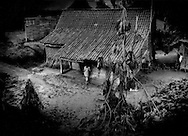 Woman enters her home which has withstood the weight of volcanic ash from Mt. Merapi's worst eruption in over 100 years coating it, but her breadfruit tree in front of the house has collapsed and been severely damages by the accumulated ash.  Along the Yogyakarta to Magalang highway, Java, Indonesia.