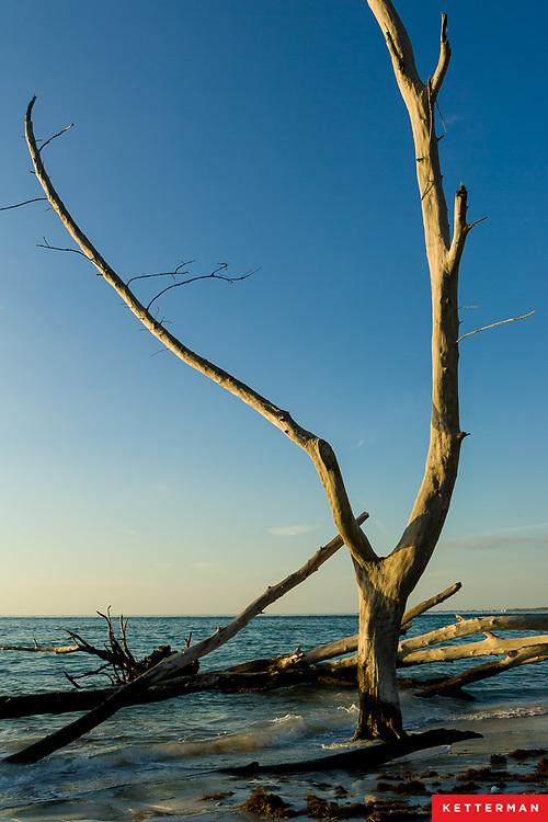Beercan Island Longboat Key